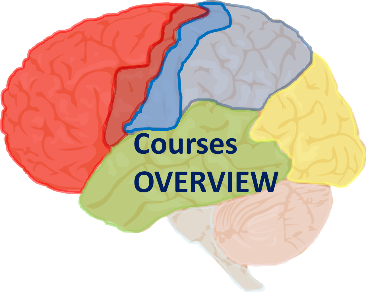 courses_overview_logo